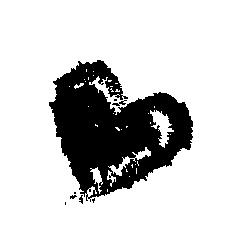SCHICHTWERK Gewürzunikate